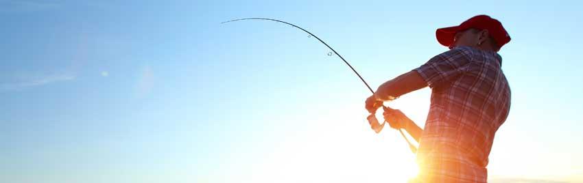 fiskesidan-1